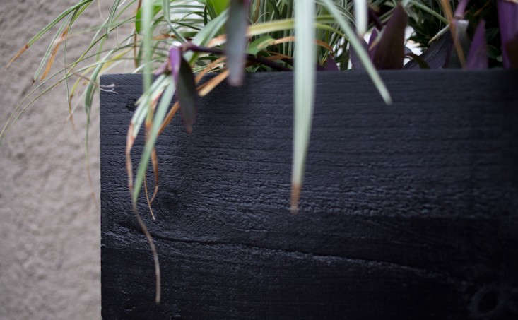 Glossy  20  Black  20  DIY  20  Window  20  Boxes  40    20  Gardenista