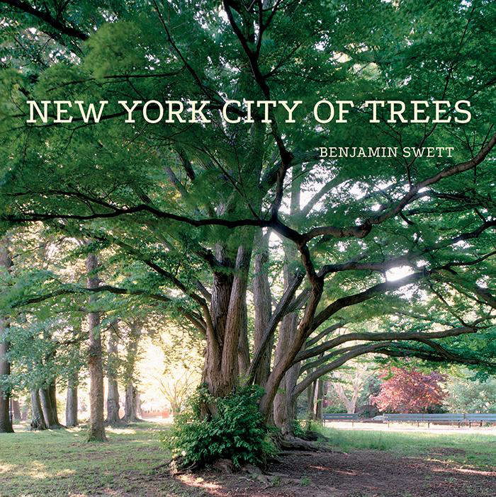 New  20  York  20  City  20  of  20  Trees