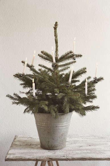 christmas tree via la petite cusine photo by susanne schanz