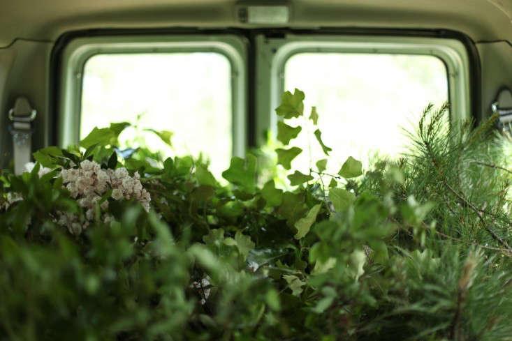 emily  20  thompson  20  foraging  20  van