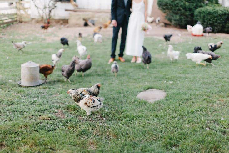 erin boyle wedding gardenista 4