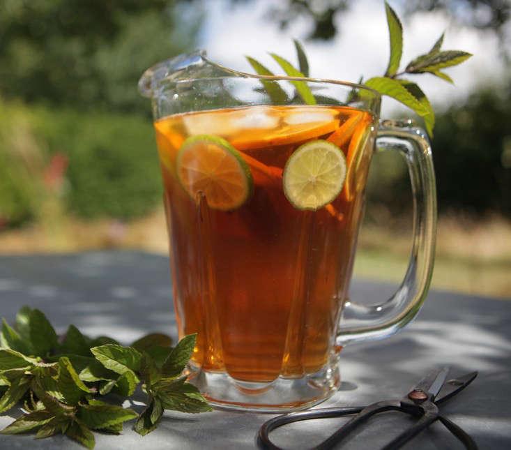 ice  20  tea  20  jug  20  new  20  crop 0