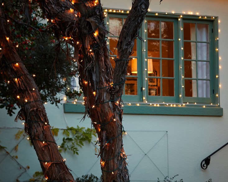 outdoor  20  holiday  20  string  20  lights  20  wrap  20  tree  20  l  20  Gardenista