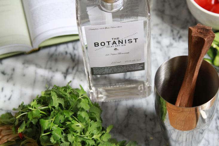 the  20  botanist  20  gin