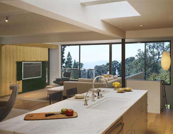 Architect Visit Jerome Buttrick in the Berkeley Hills portrait 5