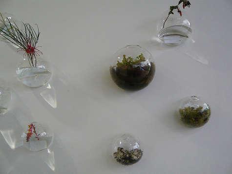 flora grubb wall vases