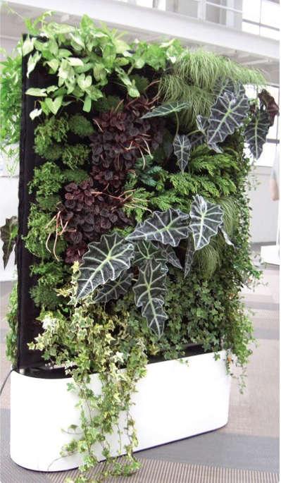 ICFF Report Greenwork Living Wall portrait 4