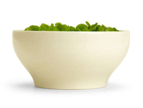 john pawson salad bowl