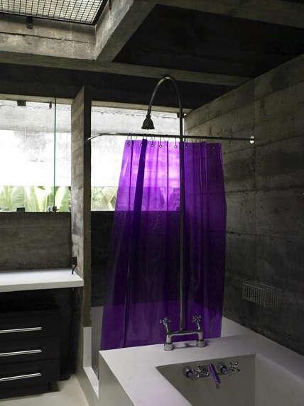richard powers purple curtain