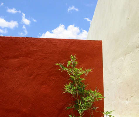 timothy koelle red wall