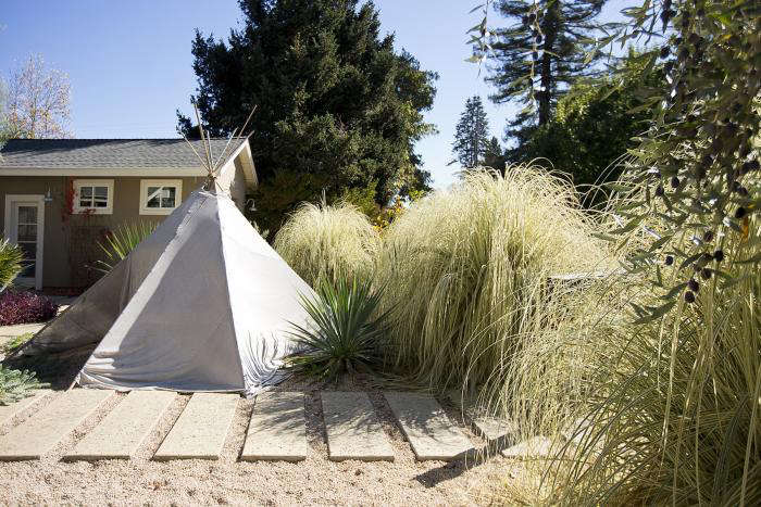 How to Know When Your Garden Needs a Teepee portrait 3