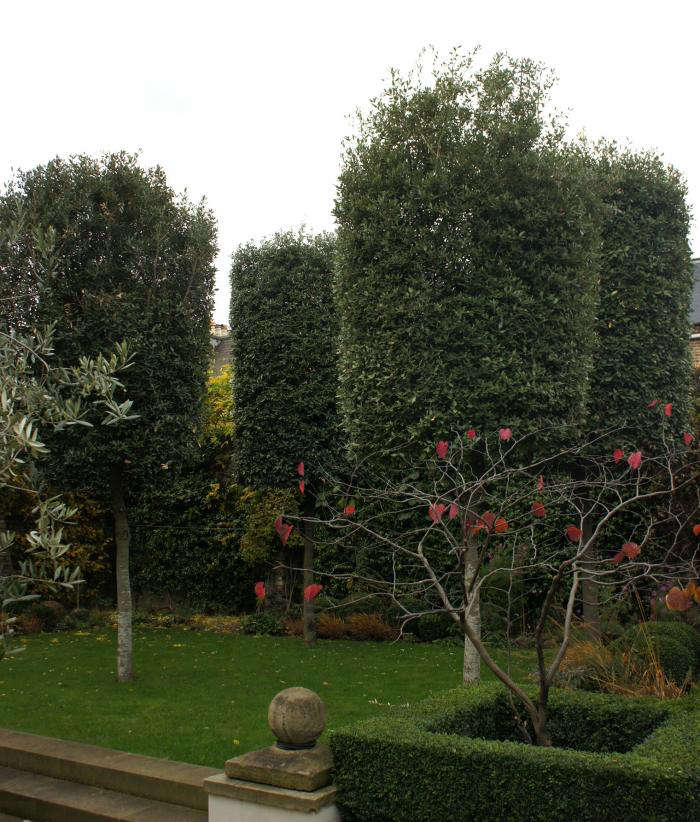 700 neisha crosland garden 02