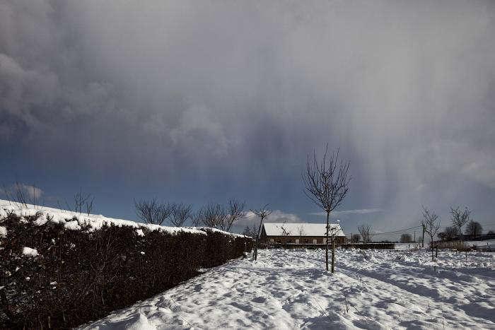 A West Flanders Barn Tells a Tale of Two Seasons portrait 12