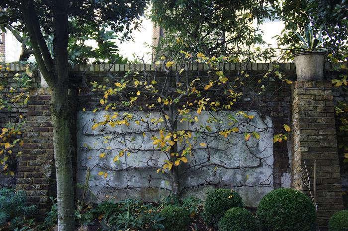 700 rmneisha crosland garden 07