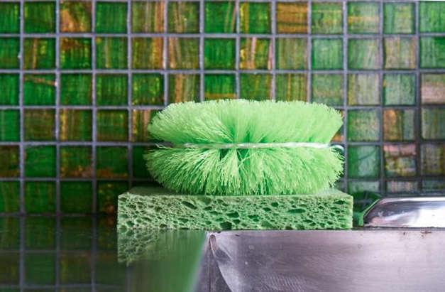 640 david fritz sponges crop