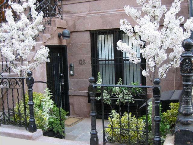 A Blooming Brownstone in Manhattan portrait 3