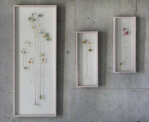 Anne Ten Donkelaars Flower Constructions portrait 7