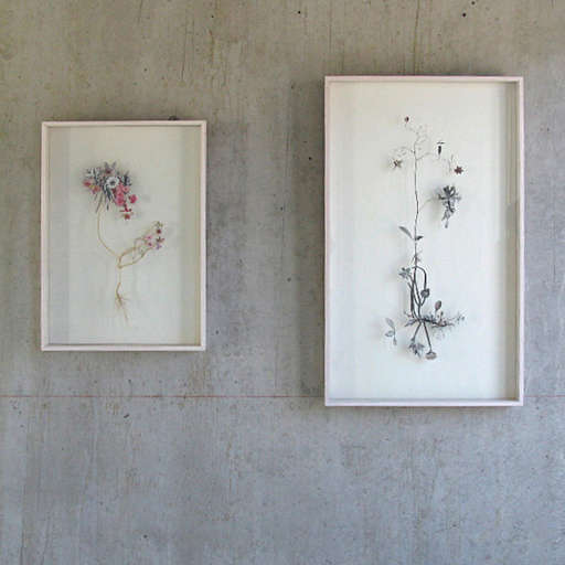 Anne Ten Donkelaars Flower Constructions portrait 3