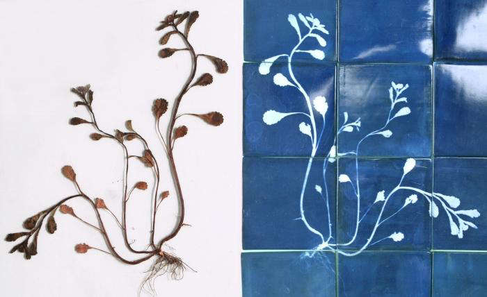 700 glithero blueware tiles 06 jpeg