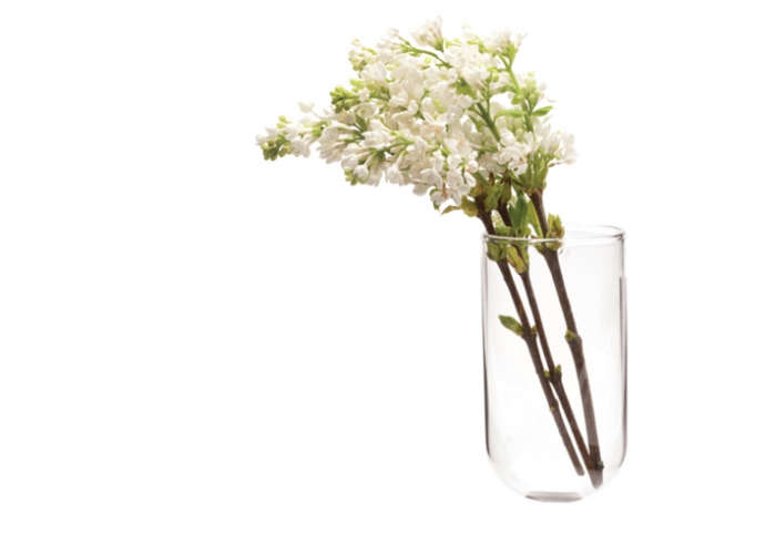 700 wall vase from sprout home