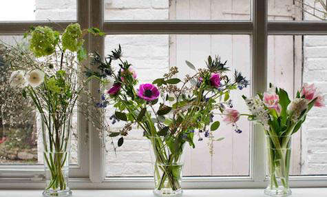 Accessories Gertrude Jekyll Flower Glasses at Natural History portrait 3