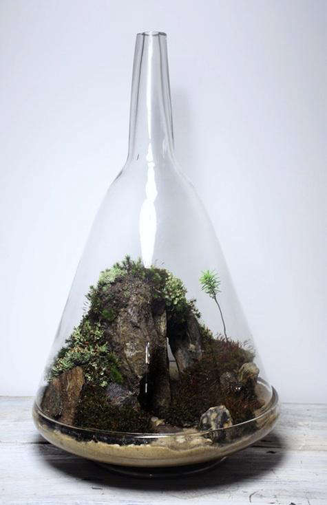 Accessories Terrariums from the Slug and the Squirrel portrait 3