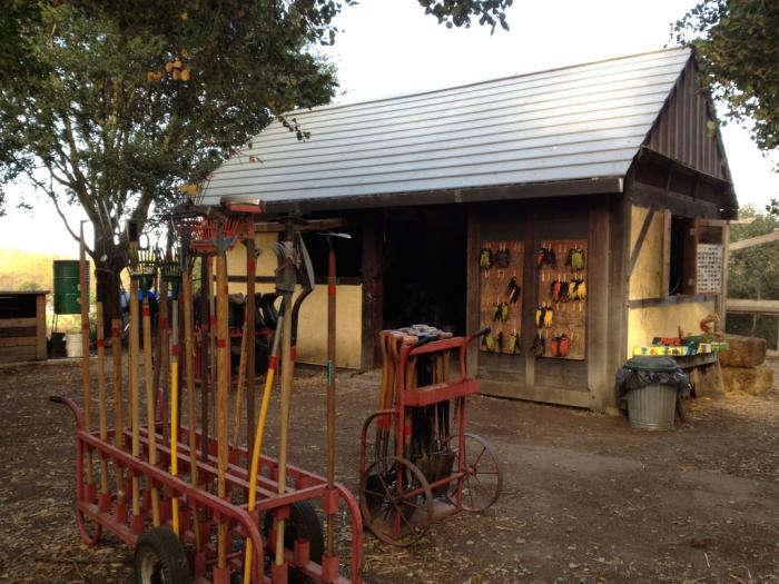 700 edible garden shed