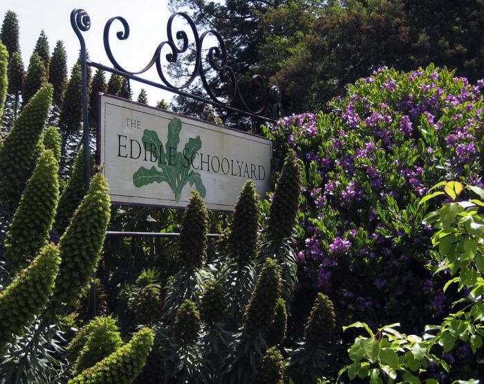 700 edible schoolyard sign