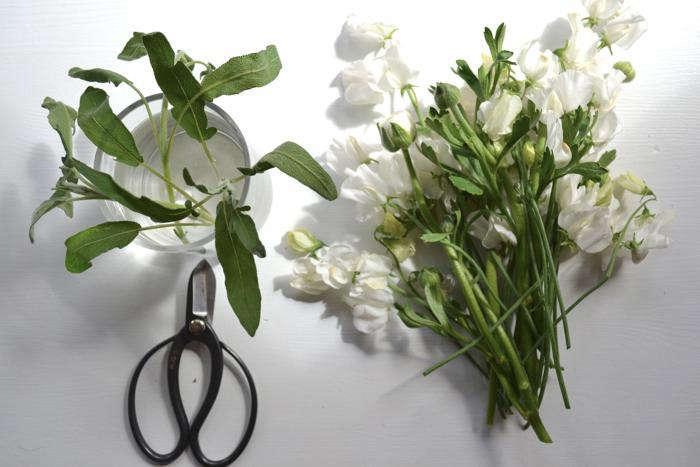 700 scissors flowers sage leaves