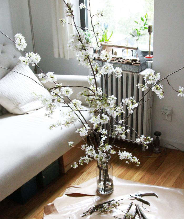 700 cherry branches and floor
