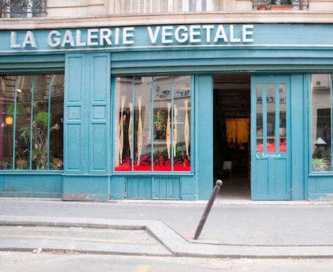 Shoppers Diary La Galerie Vegetale in Paris portrait 3