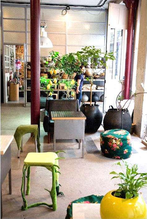 Shoppers Diary La Galerie Vegetale in Paris portrait 7