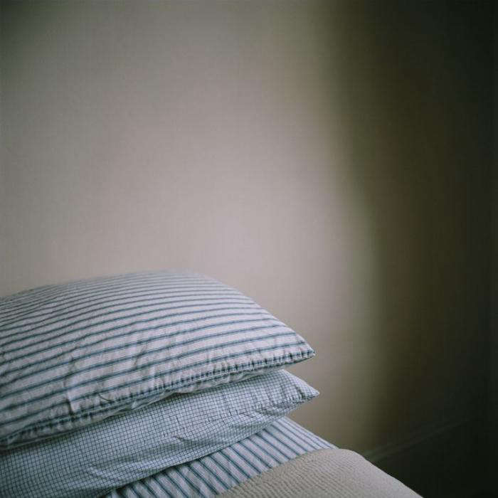 700 brian ferry home pillows jpeg