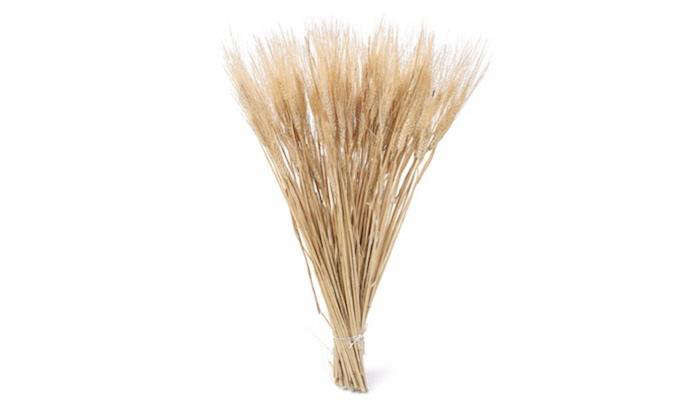 700 dried wheat product