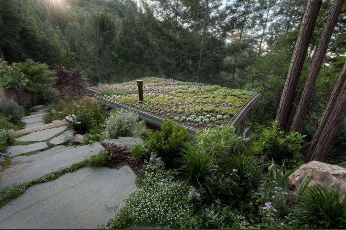 700 green roof yost