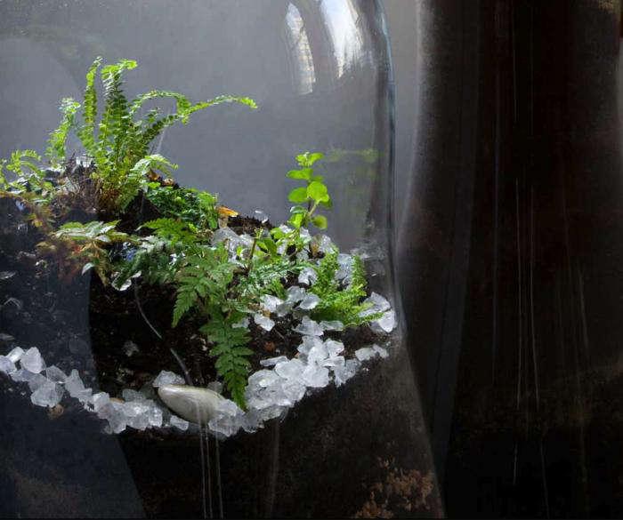 700 paula hayes giant terrarium closeup