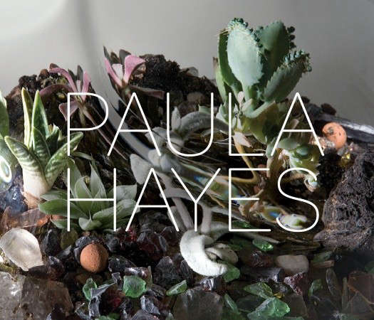 Required Reading From Terrariums to Green Roofs portrait 3
