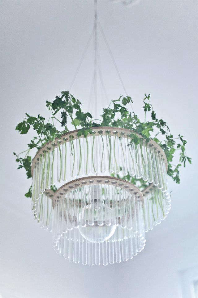 pani test tube chandelier parsley
