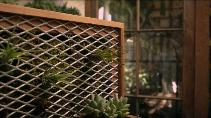 DIY Vertical Garden Kit Just Add Water and a Wall portrait 7