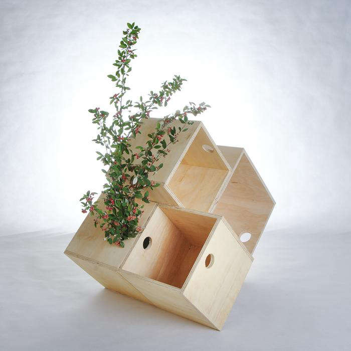 700 plywood boxes with plant