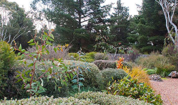 700 reid and friends wild garden