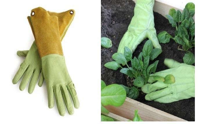 700 urban gardening vignette 2