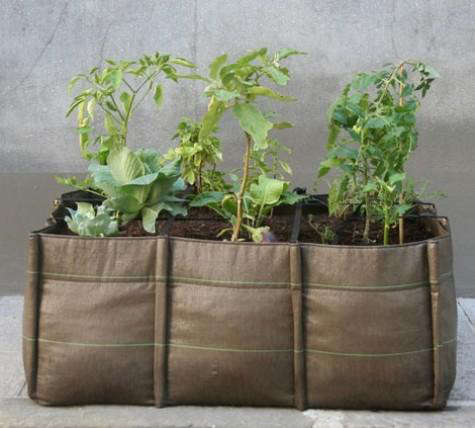 Outdoors Mobile Garden Containers by Bacsac portrait 4