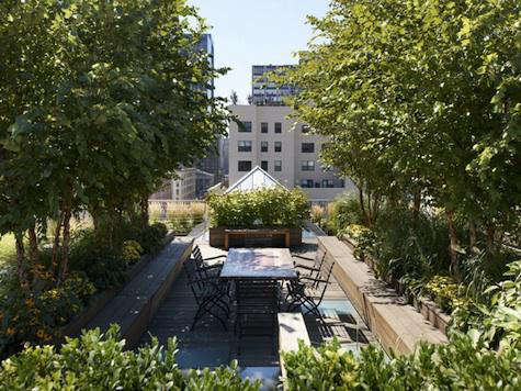 Required Reading New York Rooftop Gardens from teNeues portrait 4