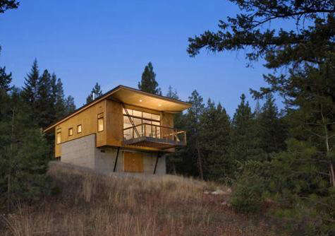 Architect Visit Pine Forest Cabin by Balance Associates in Seattle portrait 3