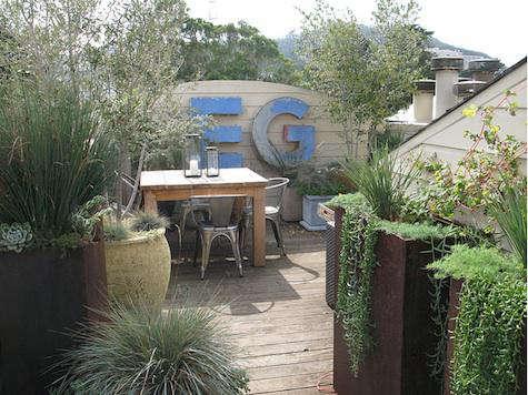 growsgreen blue garden 2