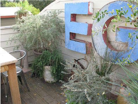 growsgreen blue garden 5