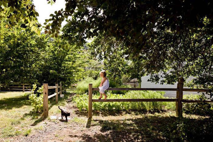 700 jessica helgerson split rail fence