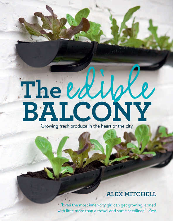 Required Reading The Edible Balcony portrait 12