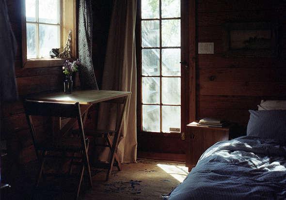 A Woodsy Cabin in a Happening LA Neighborhood115 a Night portrait 6
